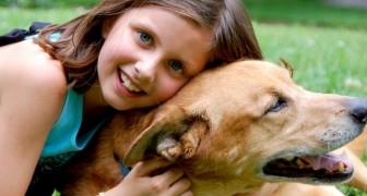 12-Jährige wird von einem Mann mit üblen Absichten verfolgt: Der Hund rettet sie, indem er den Mann angreift