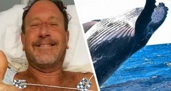 Michael como Pinóquio: engolido por uma baleia, ele saiu vivo