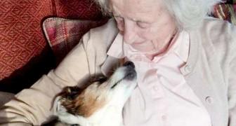 96-jährige Frau adoptiert 17-jährigen Hund: Ich wusste sofort, dass er der Richtige für mich ist