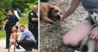 Bimbo autistico scomparso viene ritrovato nel bosco sano e salvo: i suoi cani lo avevano protetto