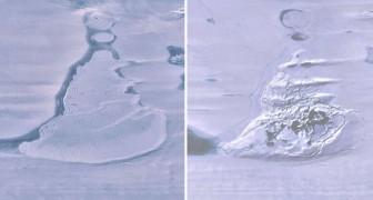 Antartide: gli scienziati hanno scoperto che un enorme lago è improvvisamente scomparso