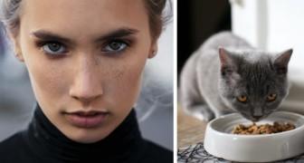 Veganes Mädchen will Fleisch aus der Ernährung der Katze entfernen: Stiefmutter ist dagegen