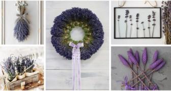 Fiori di lavanda: scopri come usarli per profumare casa e creare decorazioni incantevoli