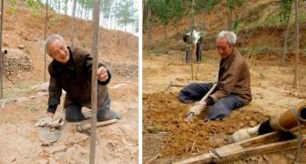 Anciano discapacitado ha plantado árboles durante casi 20 años: ahora ha crecido un verdadero bosque