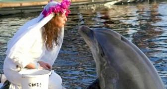 Se casa con un delfín pero cuando él fallece decide quedarse viuda de por vida