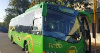 Autobus elettrici, gratuiti e alimentati a energia solare: l'iniziativa di una città australiana