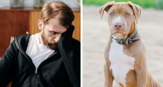 La femme dit que le chien s'est enfui de la maison, mais cinq ans plus tard, son mari découvre que c'est elle qui l'a emmené à un refuge
