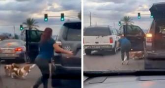 Mujer detiene el tráfico y salva a tres perros que estaban cruzando la calle: nadie se había detenido para ayudarlos