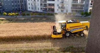 Agricoltore rifiuta di vendere il terreno e ora lavora il suo campo accerchiato da case e palazzi