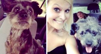 Elle adopte un petit chien malade pour que ses derniers jours de vie soient remplis d'amour et d'affection