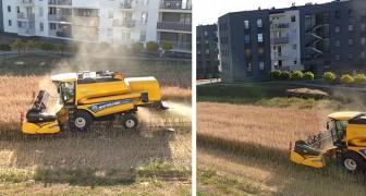 Dieser Bauer weigert sich, seine Felder zu verkaufen: Er bewirtschaftet sie jetzt in seiner grünen Ecke inmitten der Gebäude