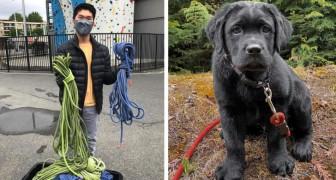 Este joven apasionado de montañismo recicla las cuerdas deshilachadas y las convierte en correas para perros