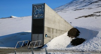 Un bunker sotterraneo su un'isola deserta custodirà il patrimonio musicale dell'umanità