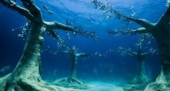Un artista realizza il primo museo subacqueo del Mediterraneo: un'esperienza visiva ed ecologica vivente