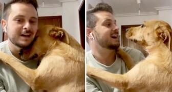No quiere quedar en la casa sola: perra abraza a su humano para convencerlo a no salir