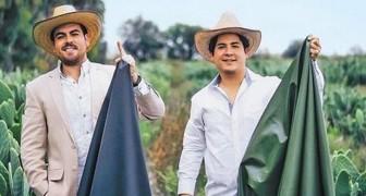 Deux jeunes hommes créent une peau écologique à partir de cactus : elle est presque identique à la vraie