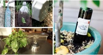 Le dritte più utili per innaffiare le piante mentre siamo in vacanza