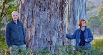 Un couple hérite de 1,5 million de dollars et les dépense pour sauver une réserve naturelle rare