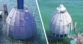Cet ascenseur sous-marin vous emmène dans les profondeurs des abysses sans avoir besoin d'être un plongeur