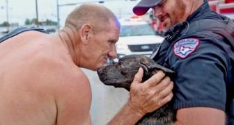 Vede un cane in pericolo e si butta in acqua per salvarlo rischiando la propria vita