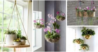 Vous n'avez pas de place pour mettre des plantes chez vous ? Essayez de les accrocher, pour décorer n'importe quelle pièce avec goût