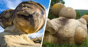 Ces mystérieuses pierres vivantes grandissent, respirent et se reproduisent : une énigme naturelle fascinante