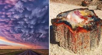15 volte in cui la natura ci ha inconsapevolmente regalato incredibili opere d'arte