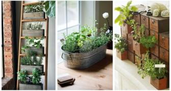 Belle, buone, profumate: usa le piante aromatiche per decorare casa e scopri come averle sempre fresche