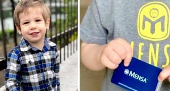 Aos 4 anos, ele deixa todos sem palavras: seu QI é quase comparável ao de Albert Einstein