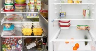Dis-moi ce que tu as dans ton frigo et je te dirai qui tu es : le curieux projet de cette photographe