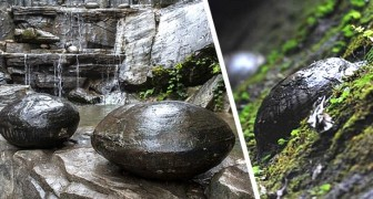 In Cina c'è una montagna che ogni 30 anni depone delle misteriose uova di pietra
