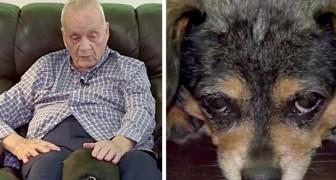 Una perrita encuentra a un hombre ciego que resbaló por el suelo: gracias a sus ladridos le salvó la vida