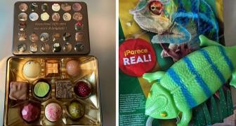 Confezioni ingannevoli: 17 volte in cui le persone sono state tradite dai loro acquisti