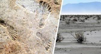 Queste impronte fossili dimostrano che gli umani erano in Nordamerica molto prima di quanto si pensasse
