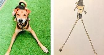 Dieser Künstler fertigt Zeichnungen von Tieren an, die so bizarr sind, dass sie fast überzeugend wirken