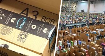 Mann betrügt Amazon um 290.000 Dollar: Kauf teurer Produkte und gefälschte Rücksendungen