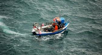 Sopravvivono 29 giorni in mare aperto mangiando arance, noci di cocco e bevendo acqua piovana