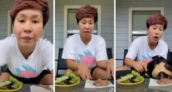 Elle veut prouver que son chien est végétarien par choix : la vidéo ironique qui a suscité l'indignation sur le web