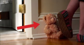 What happens to this teddy bear will put a smile on your face! What a great video