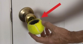 He cuts a tennis ball: the use of it, is really ingenious !!