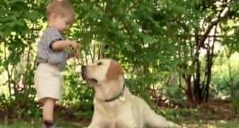 O que este menino faz junto com o seu cão é muito doce...
