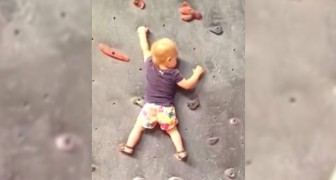 This little 18 months old girl can barely walk, but what she does on the rock wall is mind blowing