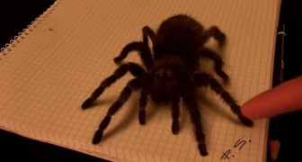 Det ser ut som om han rör en gigantisk spindel, men sanningen är ofattbar