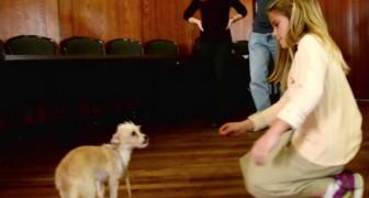 Ze steekt haar hand uit naar deze in de steek gelaten en angstige hond: kijk naar haar reactie...