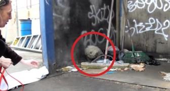 Encontram um cão cego que vive no lixo, o que conseguem fazer é um milagre!