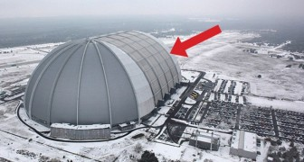 Van Buiten Lijkt Het Een Koele Militaire Hangar, Maar Binnenin Zit Een… TROPISCHE Verrassing!