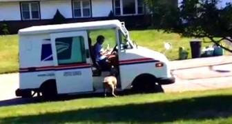 Als de postbode eraan komt, begint deze man te filmen: wat zijn hond doet, is te schattig!