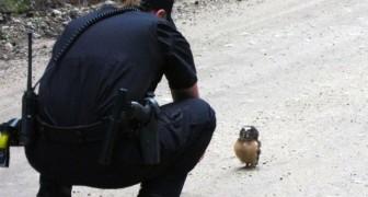 Una policia de patrulla tiene un encuentro que le cambiara el dia...!!!