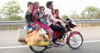 This driver can't believe his eyes: look how this family is traveling ... Wow!