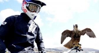 Sfida il falco con la mountain bike!